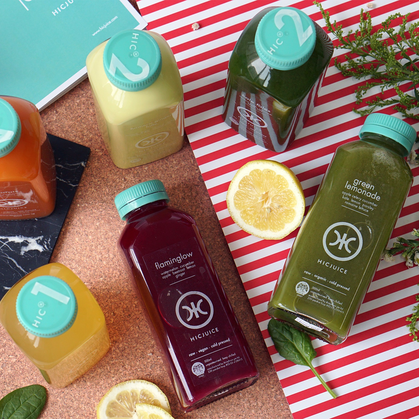 the alkaline cleanse 1 day